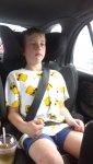 seatbelt.jpg